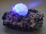 ダルネゴルスク産カラーレス蛍光フローライトonスファレライト原石497.5g