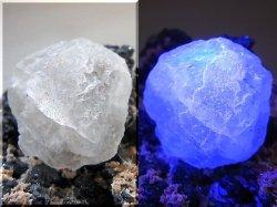 画像2: ダルネゴルスク産カラーレス蛍光フローライトonスファレライト原石497.5g